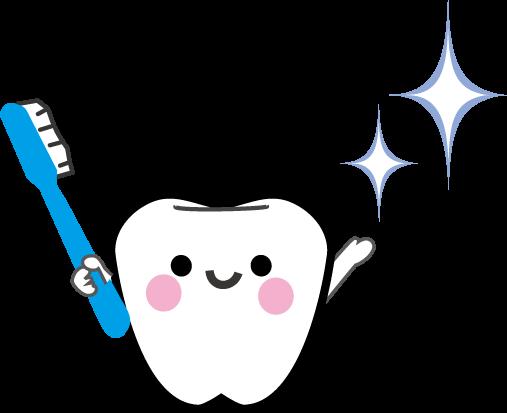 かわいい歯